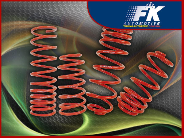Lowering Springs VW Tiguan (5N) Fr/Re ca. 30 mm